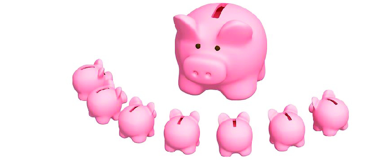 financialliteracypig